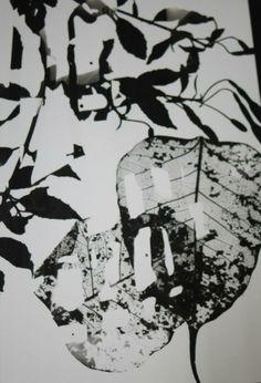 Darkroom// Experimental print// Selective development.