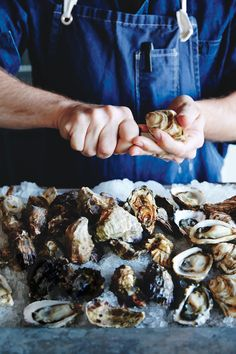 How to Shuck, Store, Serve, and Cook Oysters - Bon Appétit