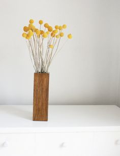 Billy buttons in brunette wood