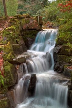 Waterfall HDR in Critique Corner Forest Waterfall, Rock Sound, Fantasy Island, Sounds Like, Amazing Places, Hdr, Landscapes, Nature, Photography