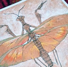 "mantis insect Art Print ""Billywitch"" Chris Richford -Unframed ink magic nature wildlife praying mantis drawing visionary ink home decor Pictures Of Insects, Spiritual Beliefs, Occult Art, Praying Mantis, Insect Art, The Uncanny, Magic Art, Gothic Art, Black Magic"
