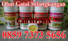 obatgataldikemaluanpria [licensed for non-commercial use only] / obat gatal pd selangkangan paha Coconut Oil, Jar, Jars, Glass