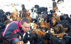 Care2 Success! A quarter million dog lovers recently formed a virtual human shield around a besieged cage-free dog sanctuary in Nis, Serbia. A Care2 online petition to protect the sanctuary was an overnight sensation, delivering tremendous political impact that halted the planned Christmas eviction of the dogs (read the original story here).