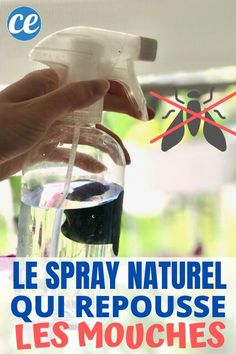 Cleaning Hacks, Cleaning Supplies, Diy Bathroom Cleaner, Get Rid Of Flies, Anti Mosquito, Natural Cleaning Products, Hand Sanitizer, Spray Bottle, Container Gardening
