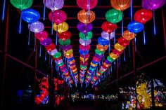The Arkansas Chinese Lantern Festival will be held at the Arkansas State Fairgrounds from December through January Large Lanterns, Chinese Lanterns, Paper Lanterns, Dark Purple Walls, Heber Springs, Phoenix Images, Chinese Lantern Festival, West Memphis, Kinds Of Shapes