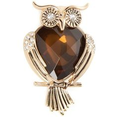 Napier Brown Gold-Tone Owl Boxed Pin ($15) ❤ liked on Polyvore featuring jewelry, brooches, brown, colored gold jewelry, wing jewelry, brown jewelry, owl jewelry and bead jewellery
