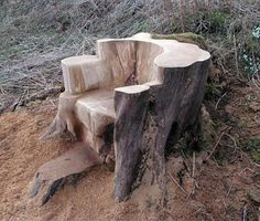 Carved from an old tree stump - Log benches outdoor - Tree Furniture, Diy Garden Furniture, Luxury Furniture, Furniture Design, Rustic Outdoor Furniture, Outdoor Decor, Diy Woodworking, Wood Projects, Carving