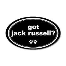 Got Jack Russell?