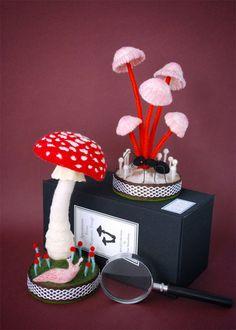 Artist reimagines fungi specimens as cute plush toys and brooches Mushroom Crafts, Felt Mushroom, Mushroom Art, Wet Felting, Needle Felting, Hedgehog Craft, Growth And Decay, Jar Art, Arts And Crafts