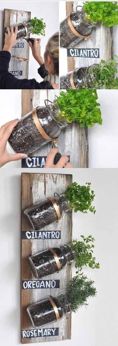 :: Mason Jar Herb Garden Live in an apartment? You can have an herb garden, too. Use mason jars and a wooden board on a spare kitchen wall.Live in an apartment? You can have an herb garden, too. Use mason jars and a wooden board on a spare kitchen wall. Mason Jar Projects, Mason Jar Crafts, Mason Jar Diy, Diy Projects, House Projects, Weekend Projects, Mason Jar Herbs, Mason Jar Herb Garden, Herbs Garden