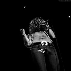 Led Zeppelin robert plant led zeppelin gif mijn ding robert plant gif so sexy unf
