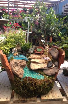 Fairy Garden in a broken terra cotta pot ~ Rainbow Gardens, Bandera Rd, San Antonio TX