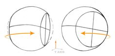 || Rotation on the y-axis by the cranium represents the head looking side to side - stanprokopenko.com ||