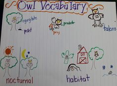 Mrs Jump's class: It's Owl Right! Owl fun and Freebies!