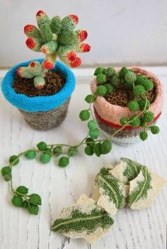 Crochet succulents.....great idea for my window-less office where the real ones…