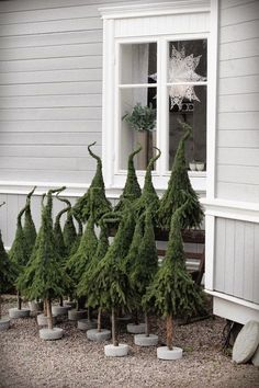 Dekoration Weihnachten - easy Xmas trees w/ extra branches of pine trees. Noel Christmas, Rustic Christmas, Christmas Projects, Winter Christmas, Christmas Tree Ornaments, Xmas Trees, Magical Christmas, Grinch Trees, Natural Christmas