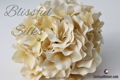 Vanilla Cream Artificial Hydrangea  WITHOUT STEM by BlissfulSilks