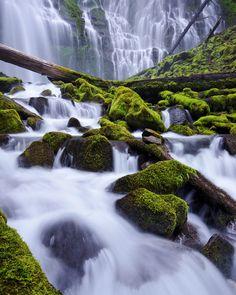 Proxy Falls, Oregon. Photo by Jeff Swanson.