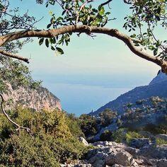 by http://ift.tt/1OJSkeg - Sardegna turismo by italylandscape.com #traveloffers #holiday   La prima #vista sulla guglia lungo il #sentiero per #calagoloritze #maredisardegna #mare #outdoor #outdoors #landscape #outdoorlife #trekking #sardegna_super_pics #sardinien #cerdeña #sardegnageographic #igersardegna #volgosardegna #italia #instasardegna #lanuovasardegna #panorama #sardegnamare #sardegna_super_pics #sardinianlandscape #sardegnaofficial #sand #sea #seascape #seascapes #igw_skyline…