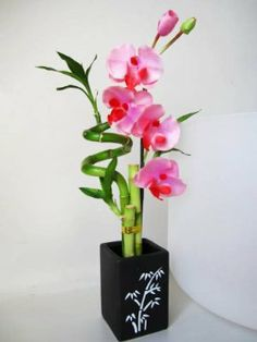 Live Spiral 3 Style Lucky #Bamboo #Plant Arrangement with Orchid & Ceramic Vase  $11.99   #luckybamboo
