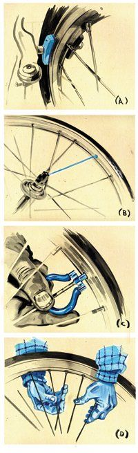 101 Bicycle Maintenance Tips — true your wheel and adjust your brakes