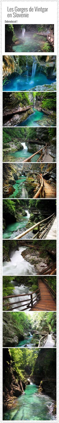 Les Gorges De Vintgar En Slovénie