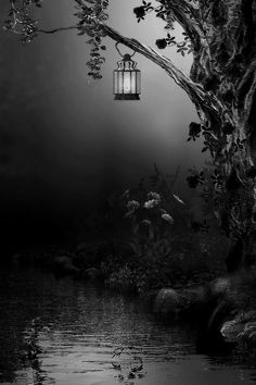 Faith means living with uncertainty - feeling your way through life, letting your heart guide you like a lantern in the dark - Dan Millman