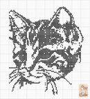 Cat pattern More Cat Cross Stitches, Cross Stitch Charts, Cross Stitching, Cross Stitch Patterns, Loom Patterns, Cat Embroidery, Cross Stitch Embroidery, Embroidery Patterns, Filet Crochet