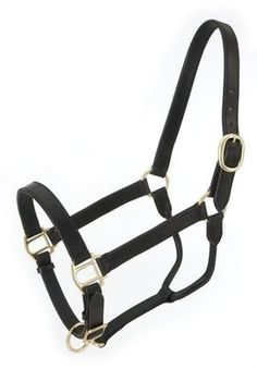Leather Stable Grooming Halters! Only at Tina's Horse Tack! Be sure to check out our website! **Website under construction until July-August 2013**