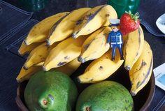 Cesta de frutas orgânicas