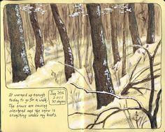 Sketching in Nature: A walk in the snow! (journaling)