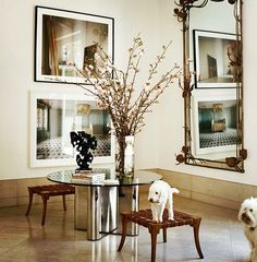 Santa Monica-based interior designer Michael S. Smith's pooches in a modern entry. #DesignDogs