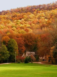 Autumn Leaved - Harlan Co. Beautiful World, Beautiful Places, Beautiful Pictures, Pine Mountain, My Old Kentucky Home, Harlan Kentucky, Autumn Scenes, All Nature, Fall Pictures