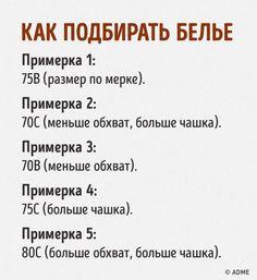 Шпаргалка: как выбрать идеальный бюстгальтер