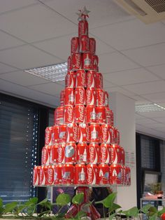 african christmas tree - Google Search