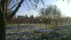 Beautiful winter morning landscape from our terrace Szigetvár Hungary  vineyard