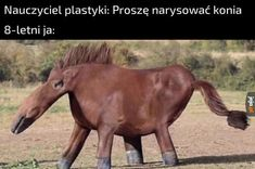 Memes Do Dia, Memes Br, Wtf Funny, Funny Texts, Hilarious, Funny Lyrics, Horse Drawings, Funny Text Messages, Funny Bunnies