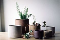 vase, gray, naut, ceramics, plant, interior design, photography, décorer, decoration, house, home, minimal, chic