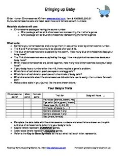 independent living skills worksheets free google search independent living skills. Black Bedroom Furniture Sets. Home Design Ideas