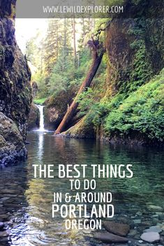 "I visited Portland, Oregon for the first time in the summer of 2016 and it was a delicious adventure. It's a great place for those who love to explore the outdoors located just outside the city and an amazing food destination. There's no shortage of things to do in and around Portland. Here are some … Continue reading ""The Best Things To Do in Oregon, In and Around Portland"""