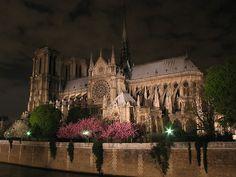 Cathédrale Notre-Dame de Paris, Paris 4e