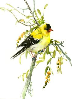 American Goldfinch yellow bird art goldfinch art finch lover painting 12 x 9 in yellow green nirsery children wall art by ORIGINALONLY on Etsy