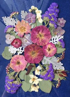 New composition of pressed flowers in glass is soon in my Etsy shop. Plant Crafts, Dry Flowers, Dried Flower Arrangements, Flower Frame, Instagram Shop, Botanical Art, Flower Crafts, Fun Crafts, Art Projects