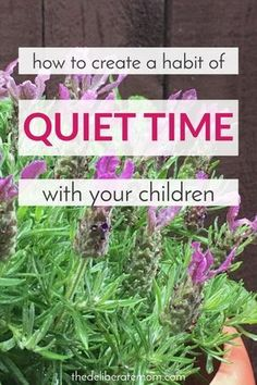 Are you weary? Do you wish you could send your kids for a long nap? Here are some ideas so that you can incorporate a quiet time into your daily routine.