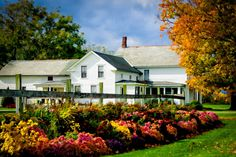 fall on the farm - Google Search