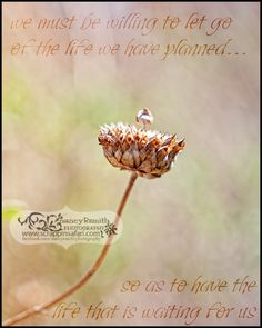 we must be willing to let go of the life we have planned…    so as to have the life that is waiting for us.