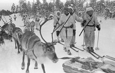 Finnish reindeer patrol in Jäniskoski during the Russo-Finnish War, which began 73 years ago (30th November 1939).