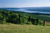 Finger Lakes in Upstate New York, but read about islands for CT so.....yea Breweries and Wineries...i'm in love