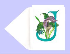 Greeting Card Birthday Card Letter O For Orchids Illuminated