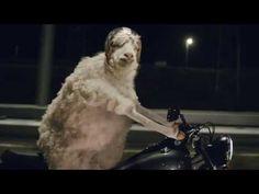 Schafe auf Motorrädern? Die Müdigkeitserkennung von Volkswagen empfiehlt dem Fahrer eine Pause wenn es nötig ist.   youtube